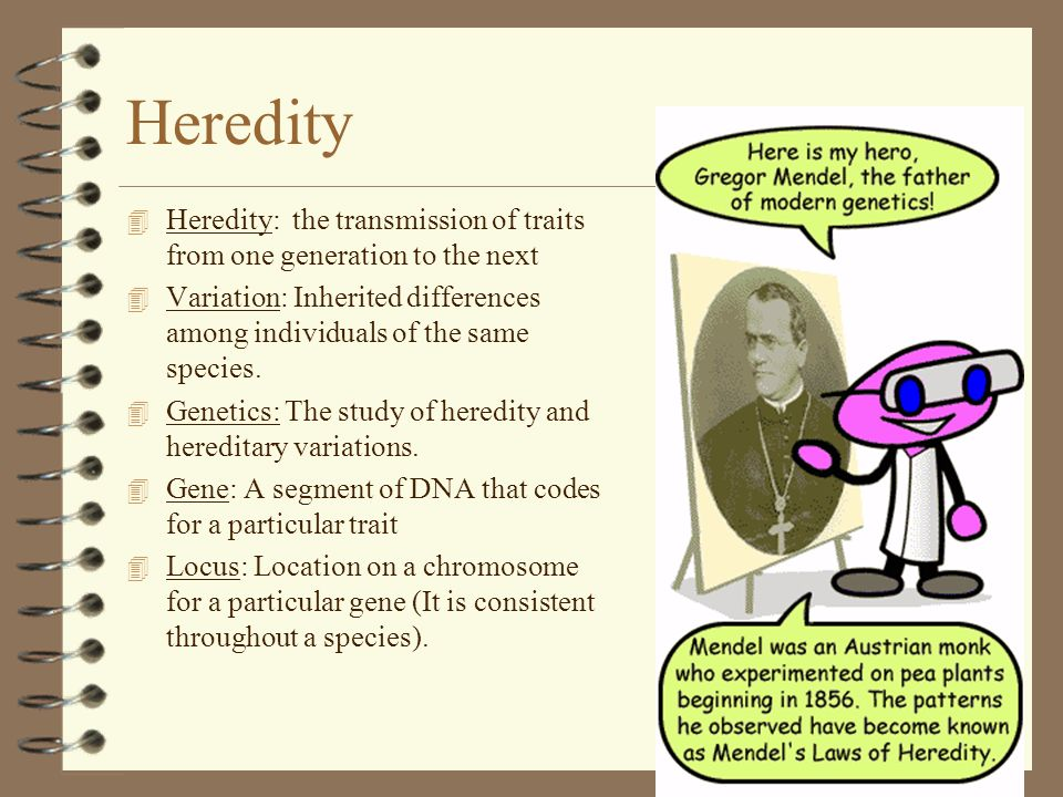 Heredity Heredity: the transmission of traits from one generation to the next.