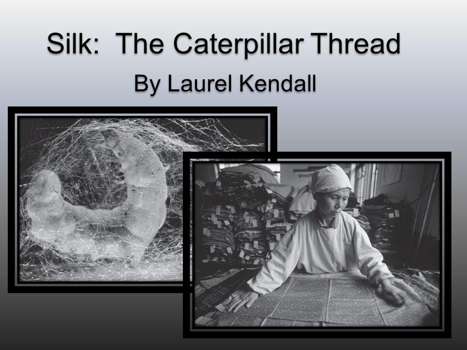 Silk: The Caterpillar Thread