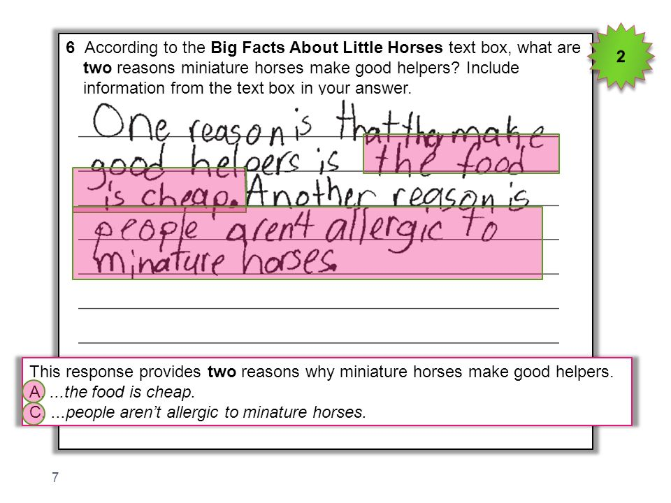 2 6 According to the Big Facts About Little Horses text box, what are. two reasons miniature horses make good helpers Include.