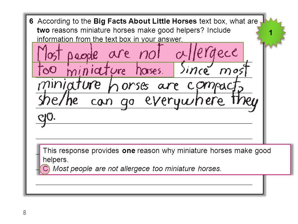 6 According to the Big Facts About Little Horses text box, what are