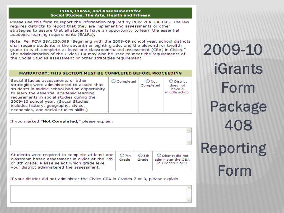 iGrants Form Package 408 Reporting Form