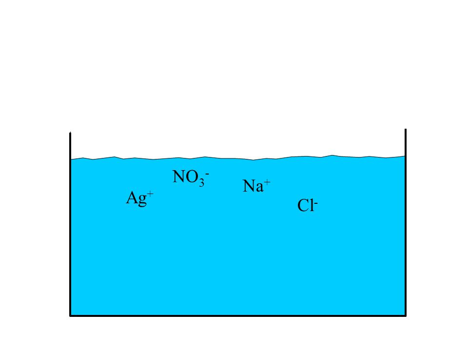 NO3- Na+ Ag+ Cl-
