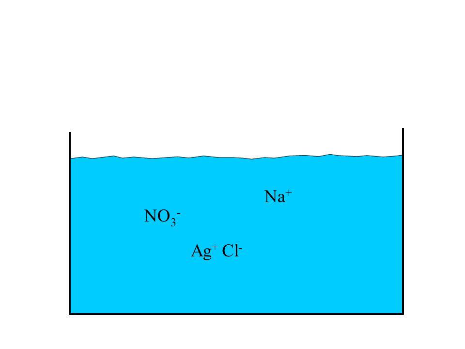 Na+ NO3- Ag+ Cl-
