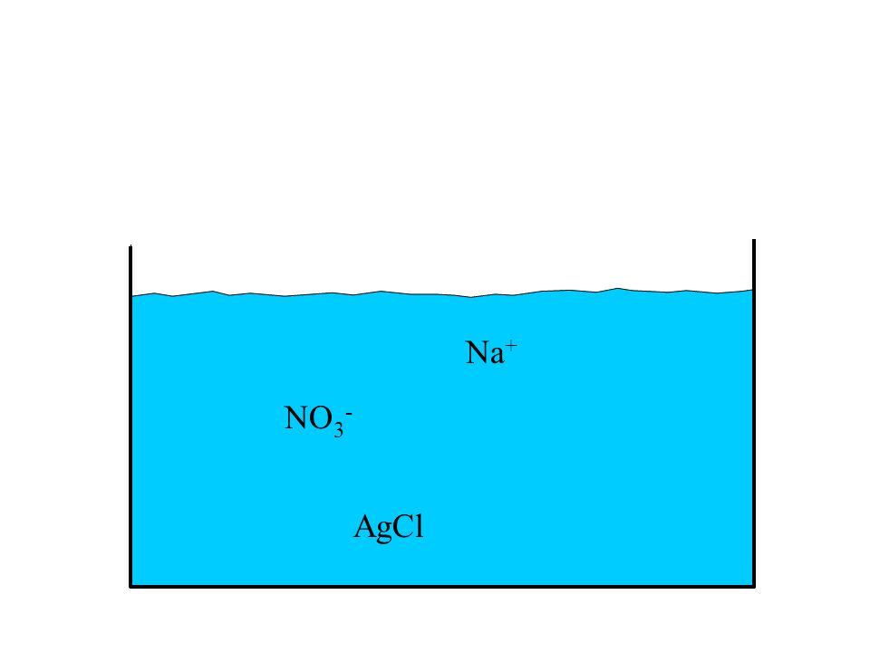 Na+ NO3- AgCl