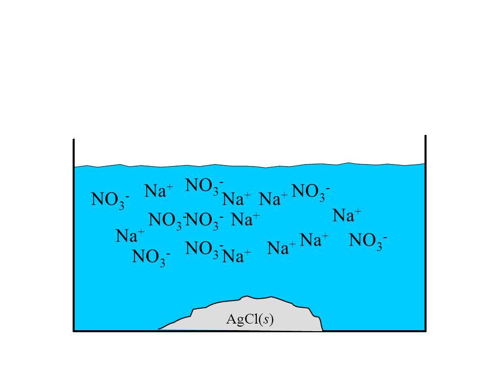 NO3- Na+ NO3- NO3- Na+ Na+ Na+ NO3- NO3- Na+ Na+ Na+ NO3- NO3- Na+