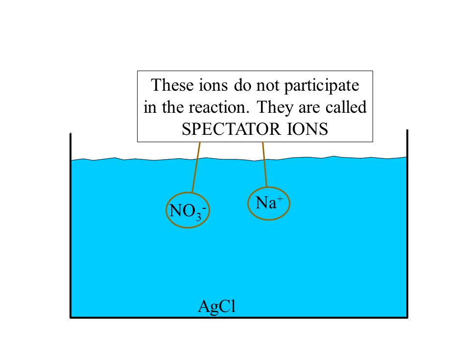 These ions do not participate in the reaction. They are called
