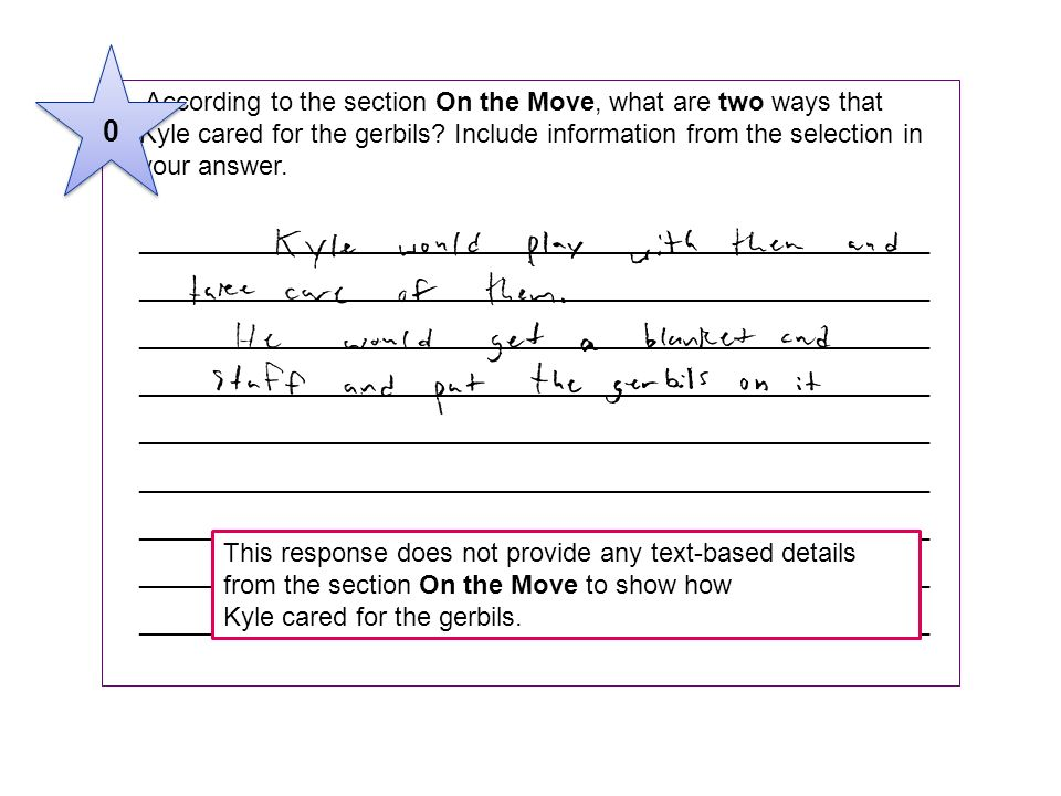 3 According to the section On the Move, what are two ways that Kyle cared for the gerbils Include information from the selection in.