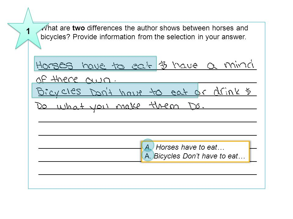 1 11 What are two differences the author shows between horses and bicycles Provide information from the selection in your answer.