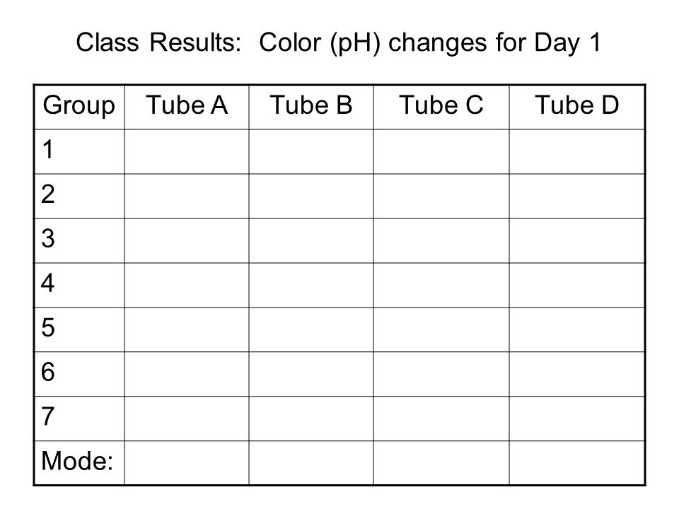 Class Results: Color (pH) changes for Day 1