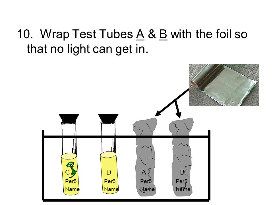 10. Wrap Test Tubes A & B with the foil so that no light can get in.