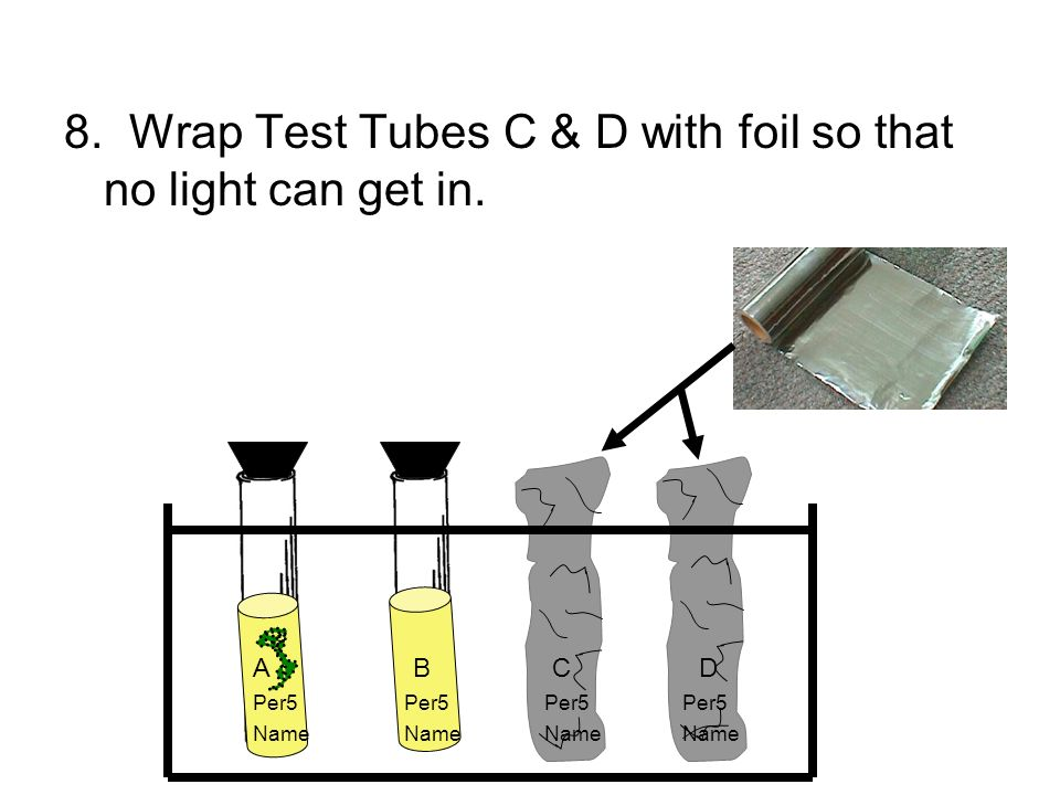 8. Wrap Test Tubes C & D with foil so that no light can get in.