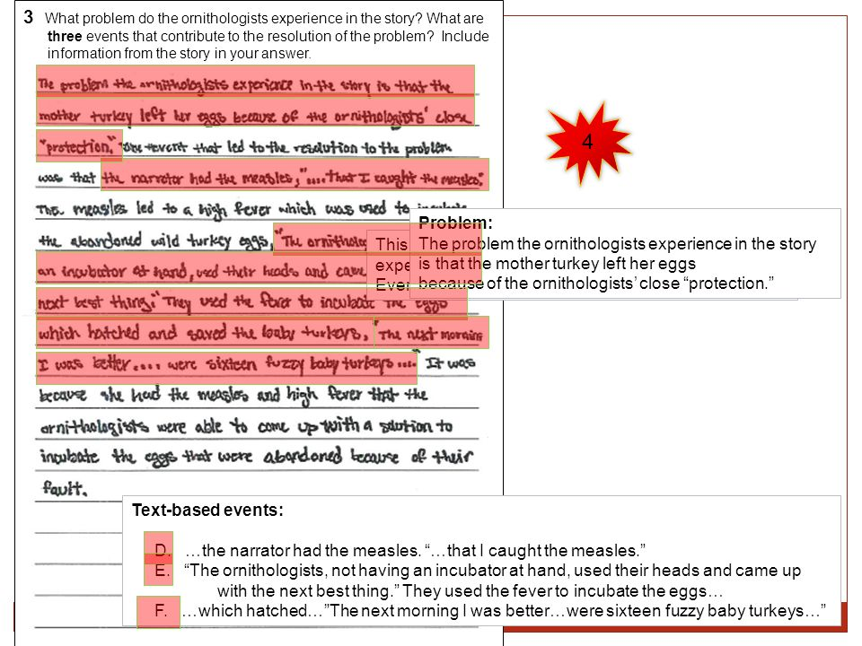 3 What problem do the ornithologists experience in the story What are