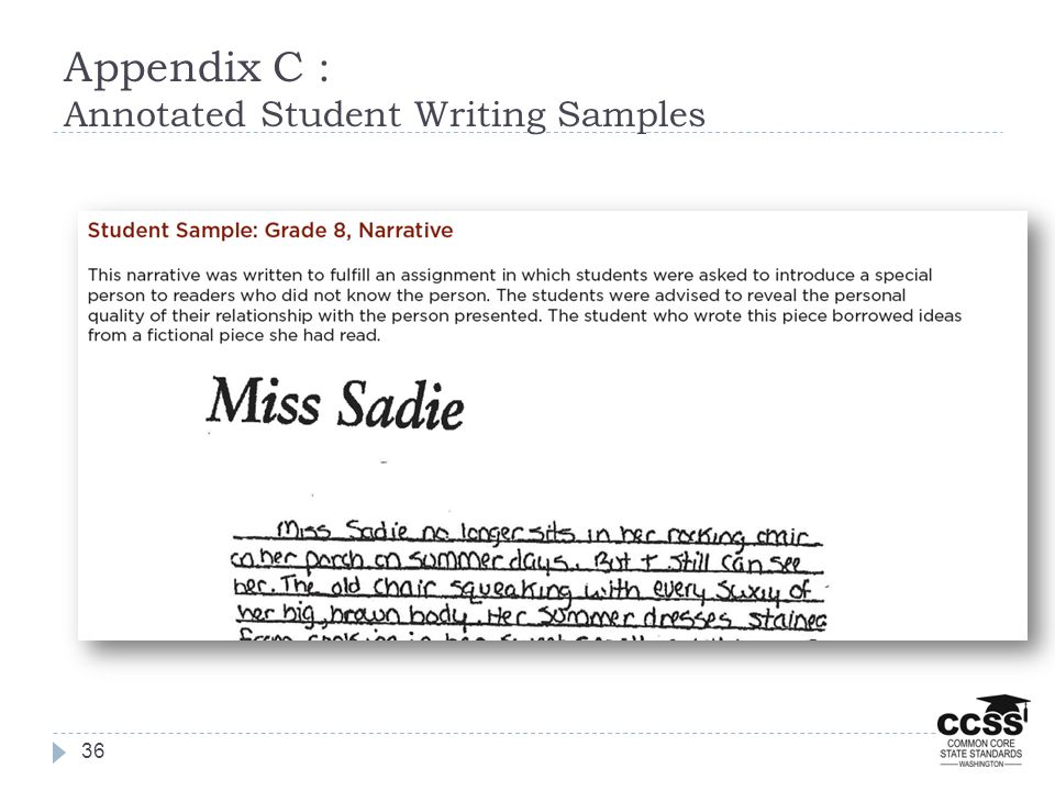 Appendix C : Annotated Student Writing Samples