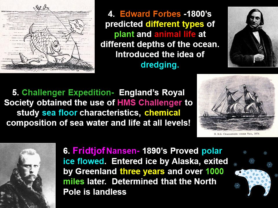 4. Edward Forbes -1800's predicted different types of plant and animal life at different depths of the ocean. Introduced the idea of dredging.