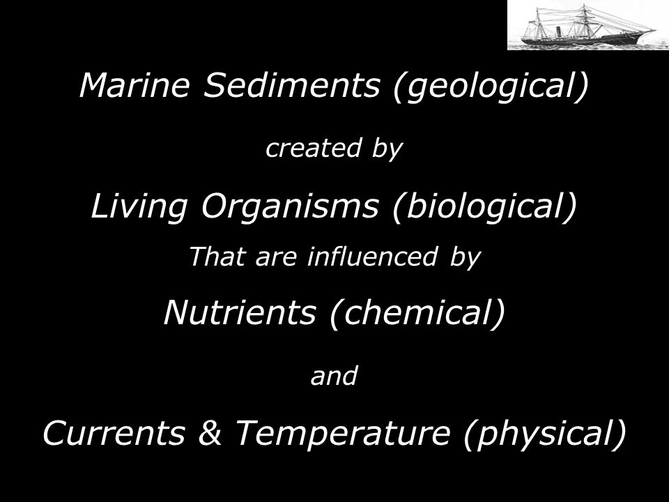 Marine Sediments (geological)