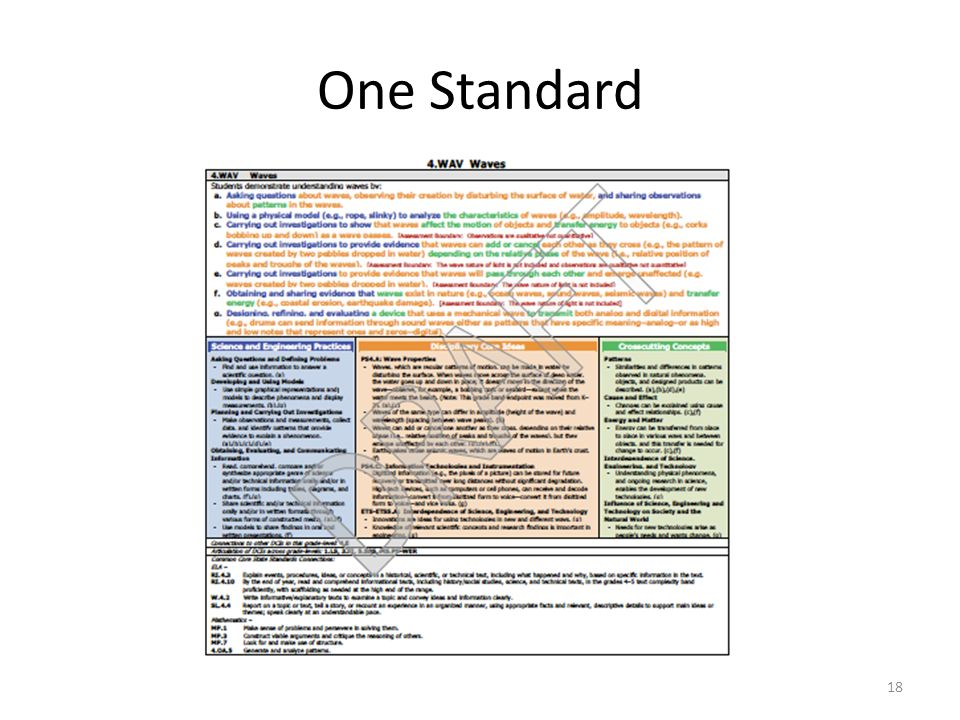 One Standard Organization of the Next Generation Science Standards