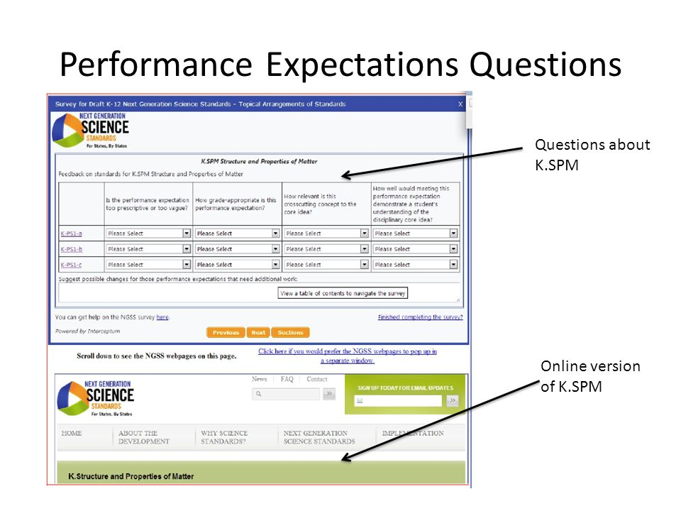 Performance Expectations Questions