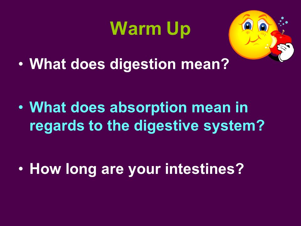 Warm Up What does digestion mean
