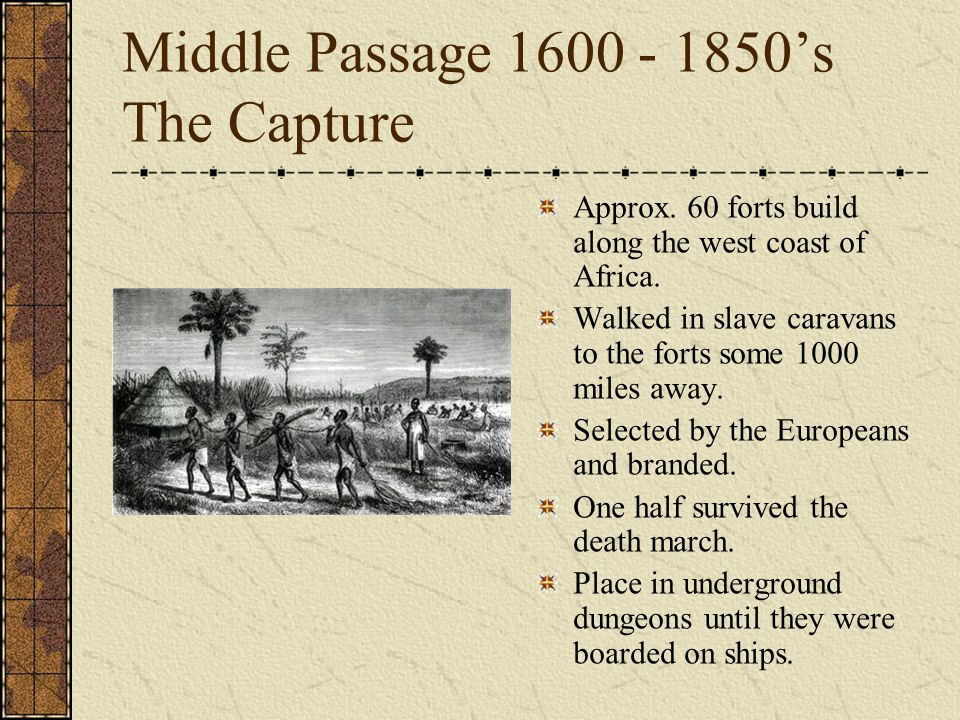Middle Passage 1600 - 1850's The Capture