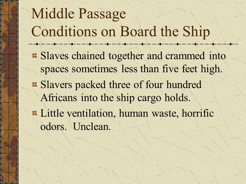Middle Passage Conditions on Board the Ship