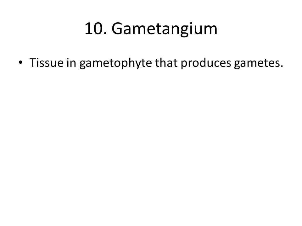 10. Gametangium Tissue in gametophyte that produces gametes.