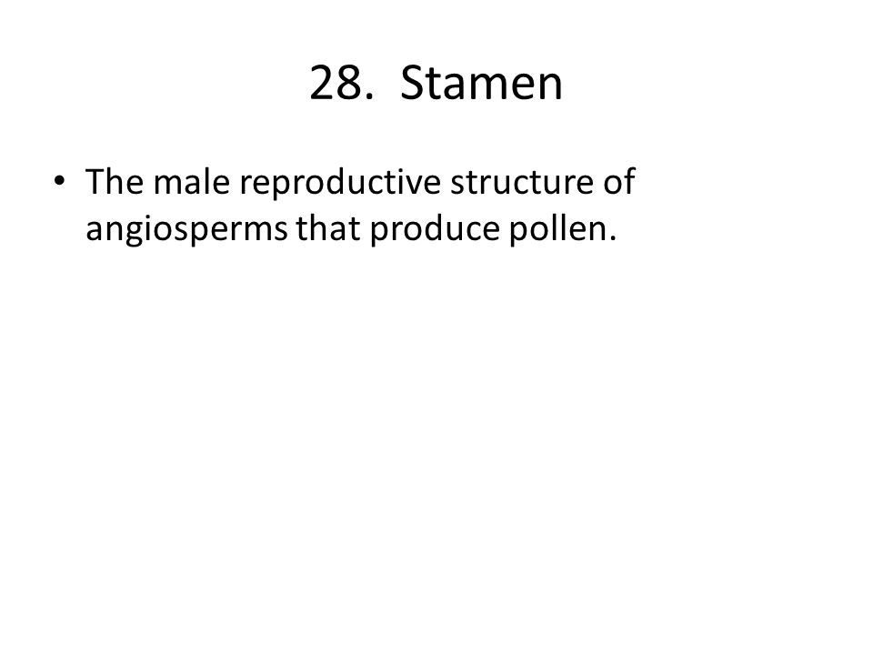 28. Stamen The male reproductive structure of angiosperms that produce pollen.