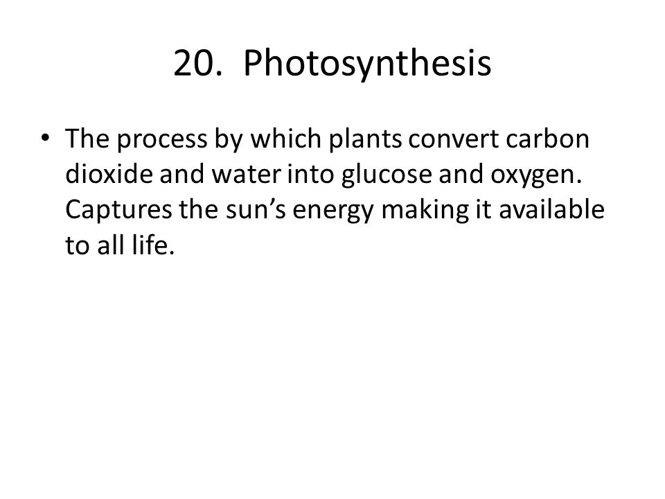 20. Photosynthesis