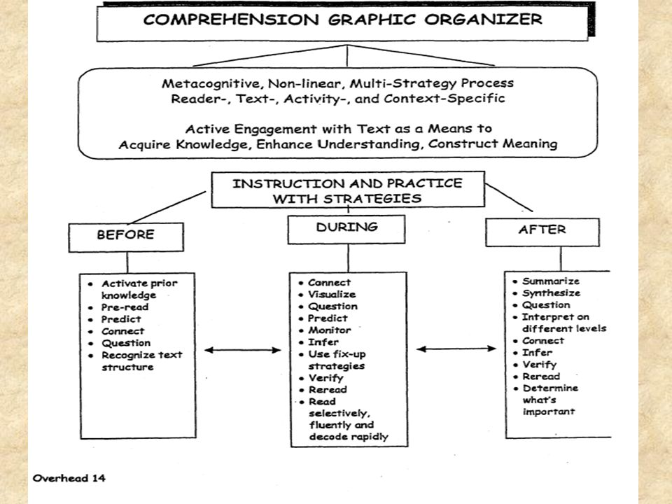 The Graphic Organizer provides the participants with a visual representation of the essential comprehension elements.