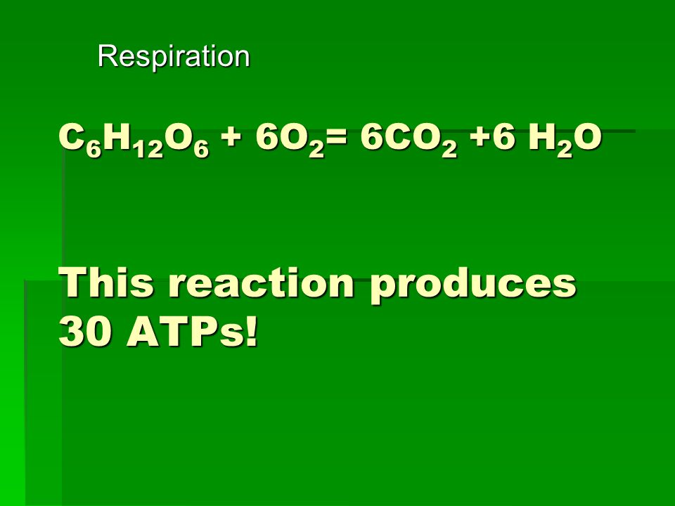 C6H12O6 + 6O2= 6CO2 +6 H2O This reaction produces 30 ATPs!
