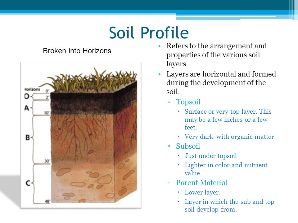 Unit 8 soils characteristics ppt download for Soil profile video