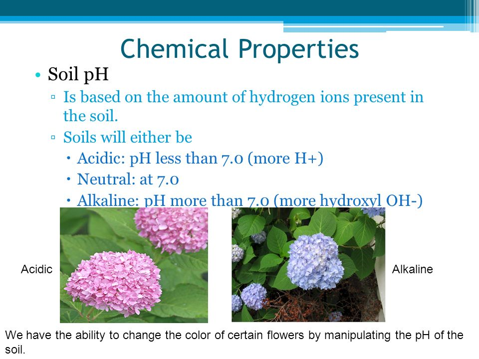 Chemical Properties Soil pH