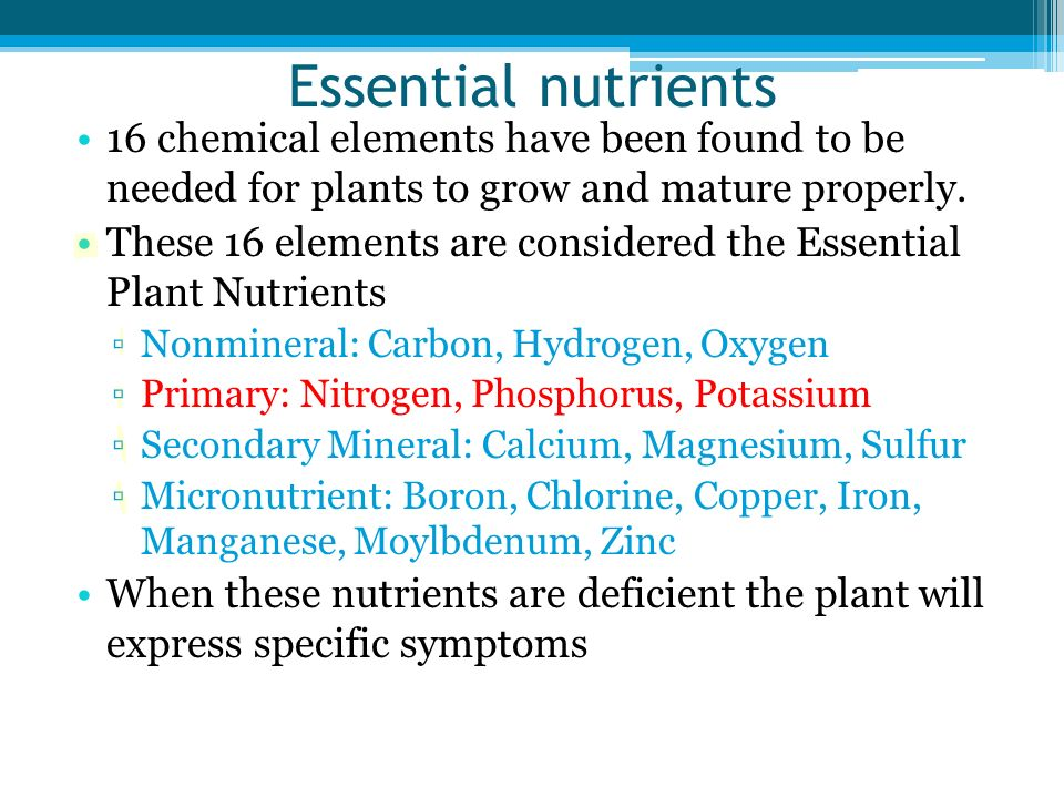 Essential nutrients 16 chemical elements have been found to be needed for plants to grow and mature properly.
