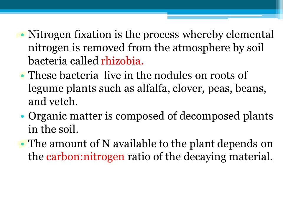 Nitrogen fixation is the process whereby elemental nitrogen is removed from the atmosphere by soil bacteria called rhizobia.