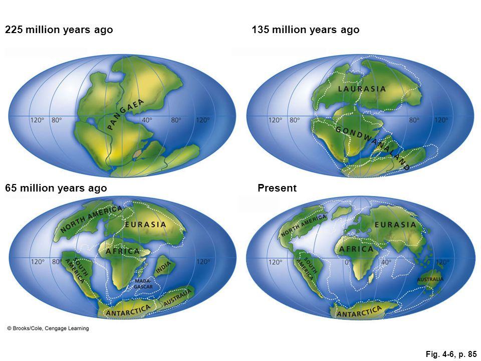 225 million years ago 135 million years ago 65 million years ago