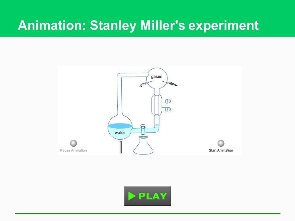 Animation: Stanley Miller s experiment