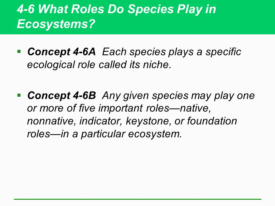 4-6 What Roles Do Species Play in Ecosystems