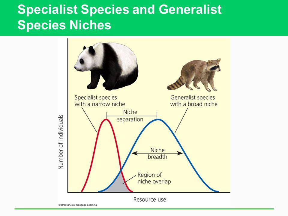 Specialist Species and Generalist Species Niches