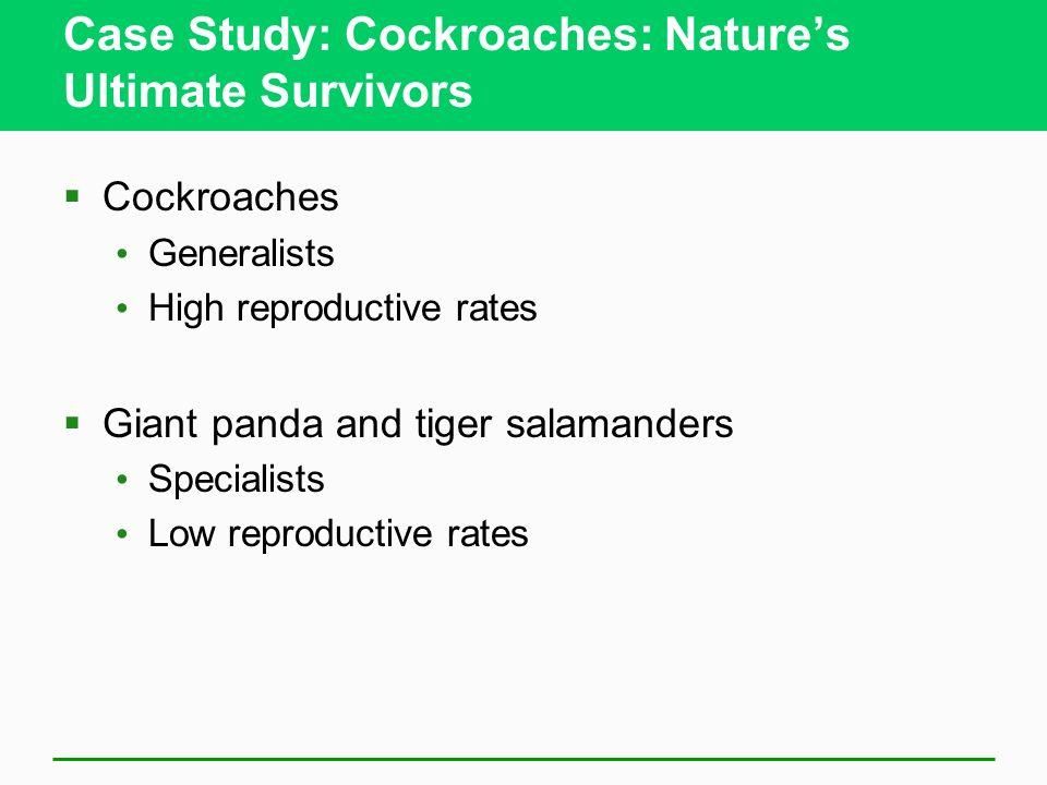 Case Study: Cockroaches: Nature's Ultimate Survivors