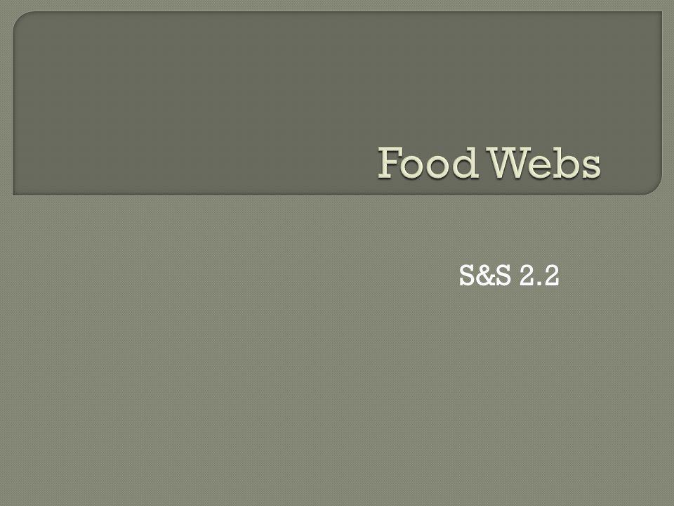Food Webs S&S 2.2