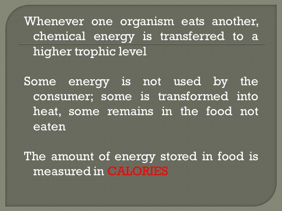 Whenever one organism eats another, chemical energy is transferred to a higher trophic level Some energy is not used by the consumer; some is transformed into heat, some remains in the food not eaten The amount of energy stored in food is measured in CALORIES