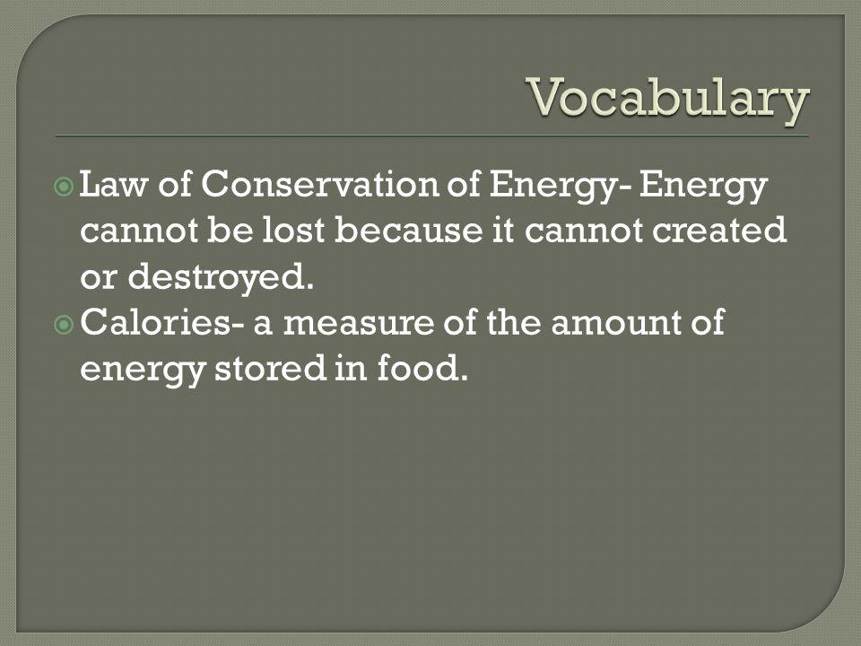 Vocabulary Law of Conservation of Energy- Energy cannot be lost because it cannot created or destroyed.