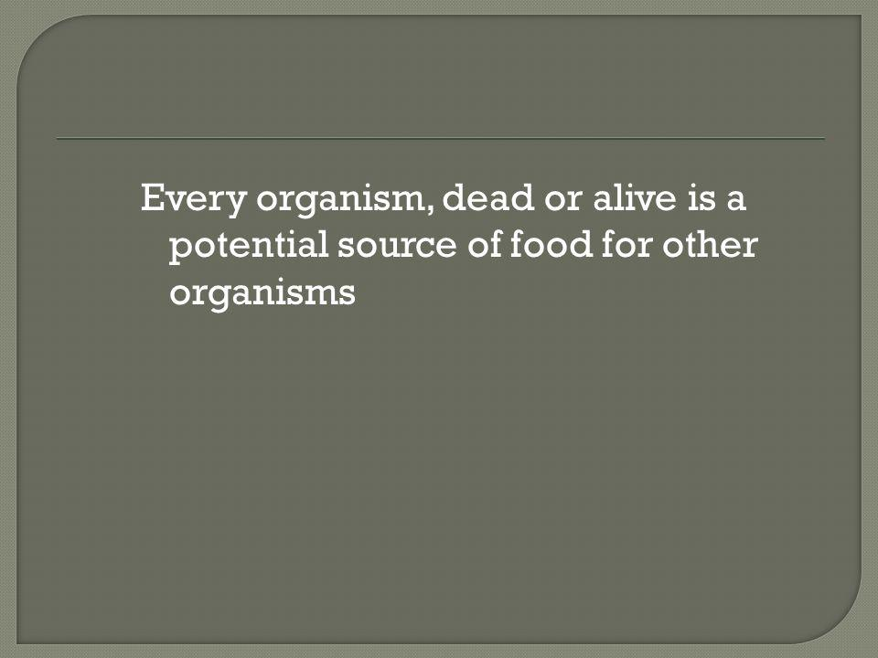 Every organism, dead or alive is a potential source of food for other organisms