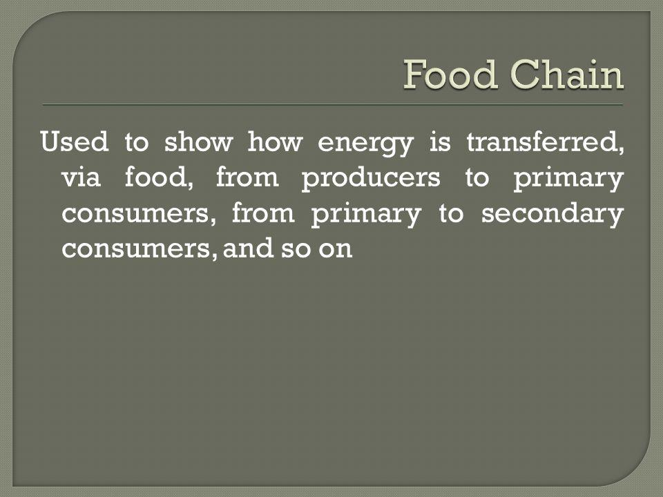 Food Chain Used to show how energy is transferred, via food, from producers to primary consumers, from primary to secondary consumers, and so on.