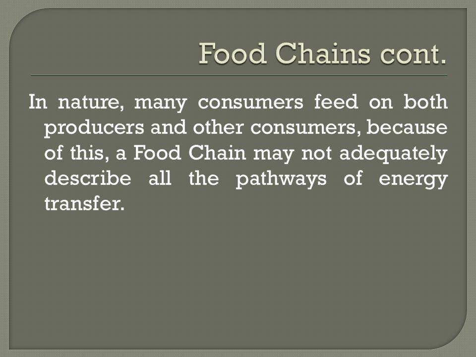 Food Chains cont.