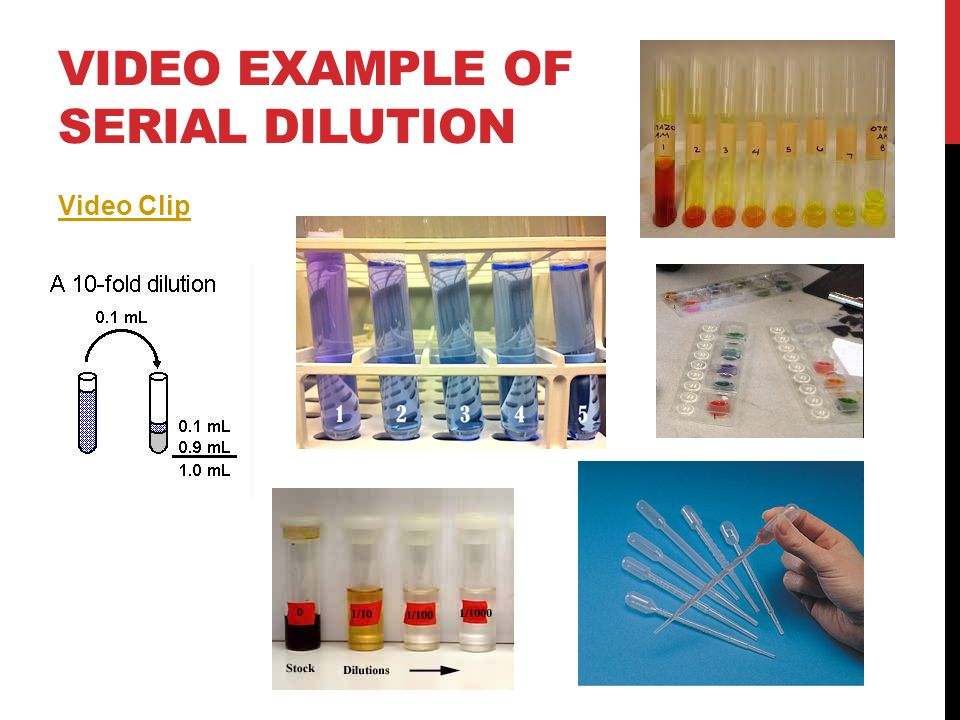 Video Example of Serial Dilution