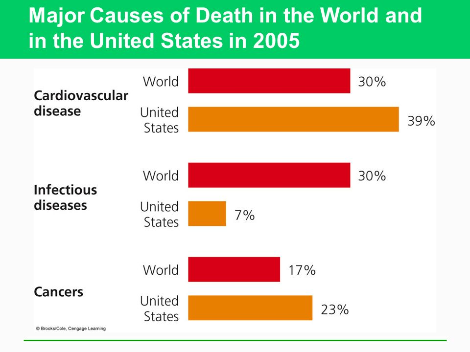 Major Causes of Death in the World and in the United States in 2005