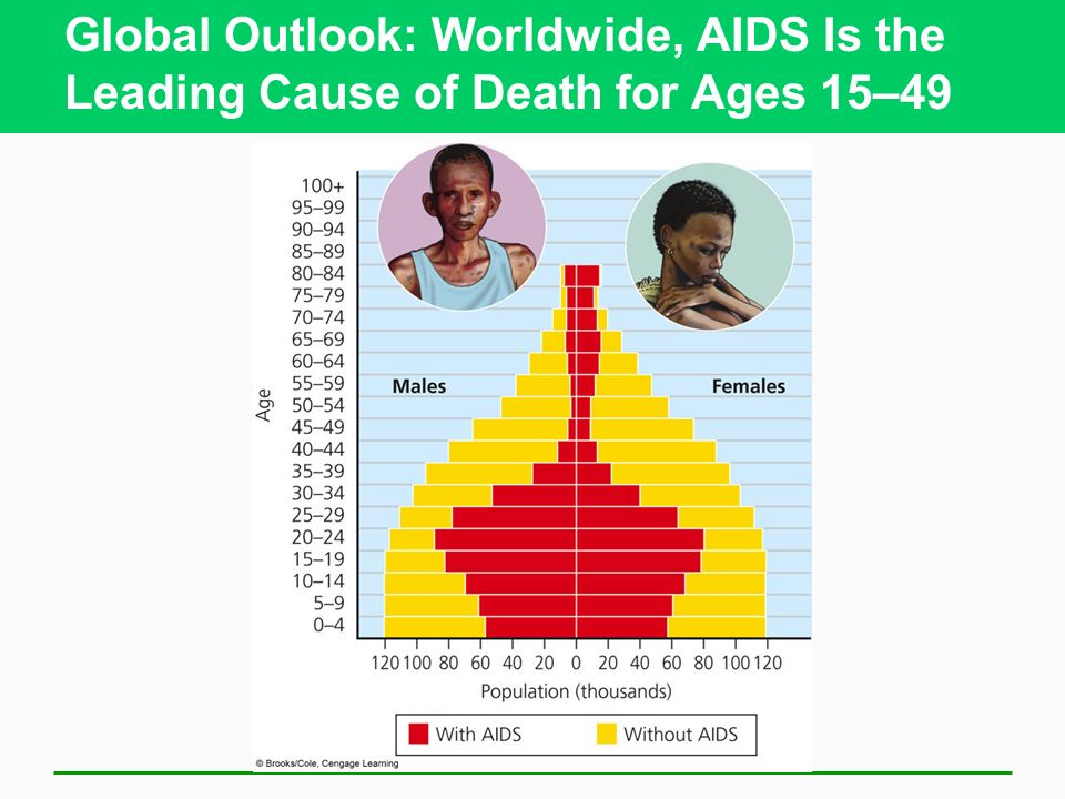 Global Outlook: Worldwide, AIDS Is the Leading Cause of Death for Ages 15–49