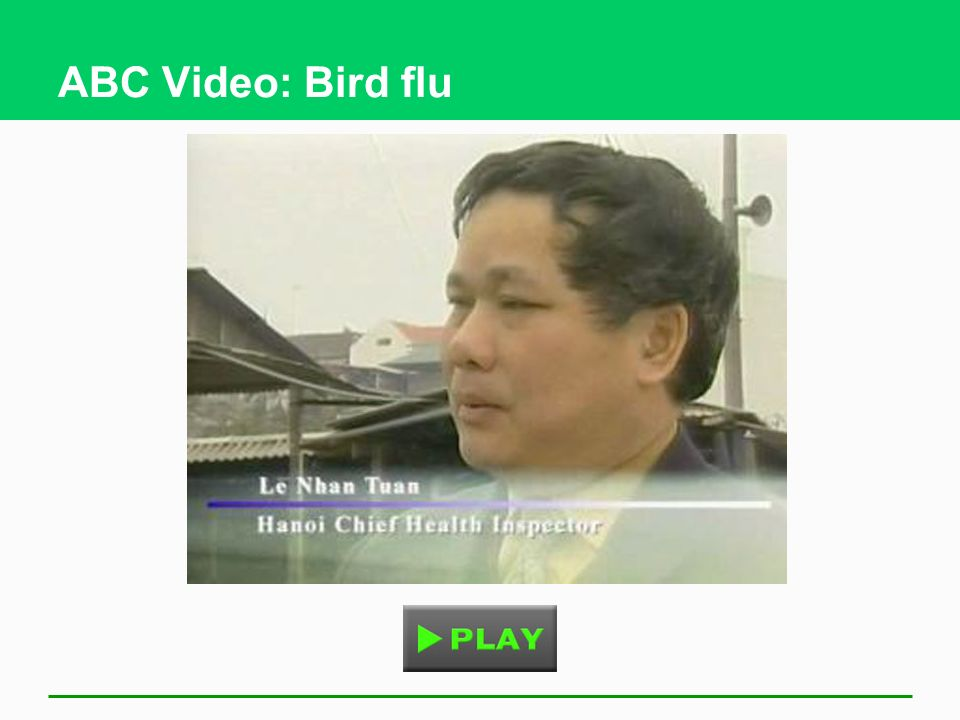 ABC Video: Bird flu