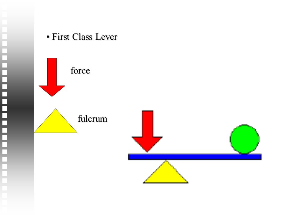 First Class Lever force fulcrum