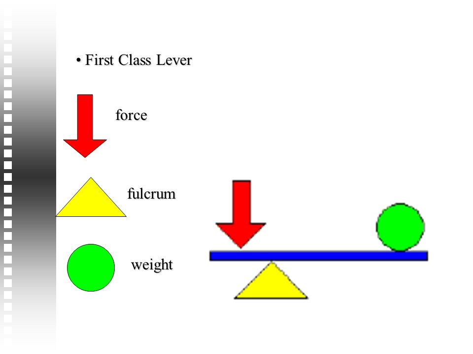 First Class Lever force fulcrum weight